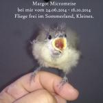 RIP Margot